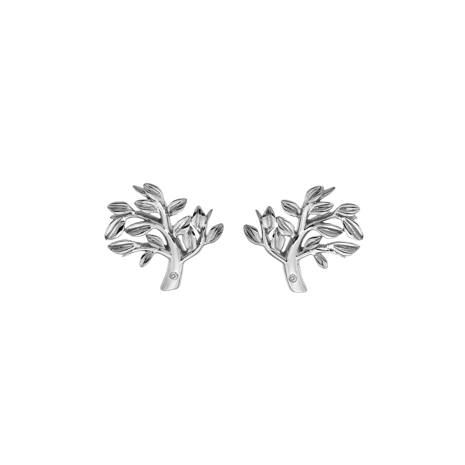 Silver tree of life studs - Carats Jewellers